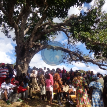 Gathering under the Kindah tree on January 6 in Accompong, St. Elizabeth.jpg